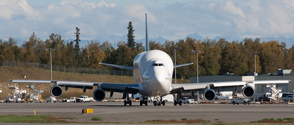 File:Nose on view of an Atlas Air Dreamlifter modified 747 at ANC (6717252247).jpg