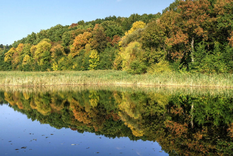 Cel mai mare parc din Moldova / Самый большой парк в Молдове