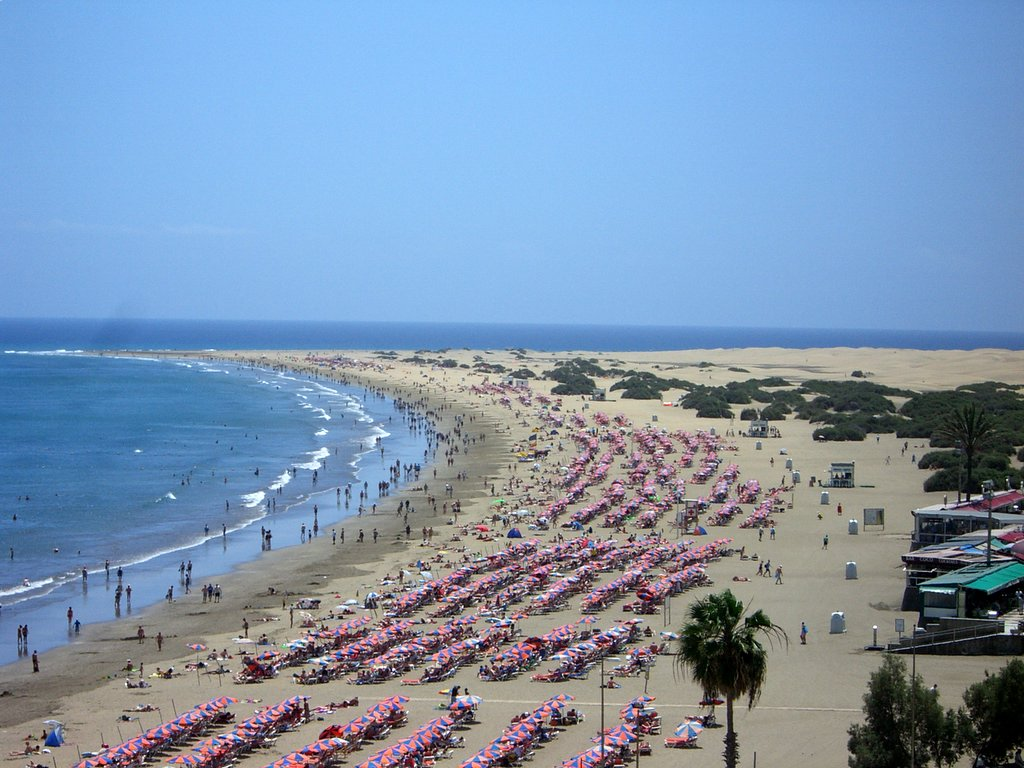 Gran Canaria Spain  city photo : Description Playa del ingles gran canaria