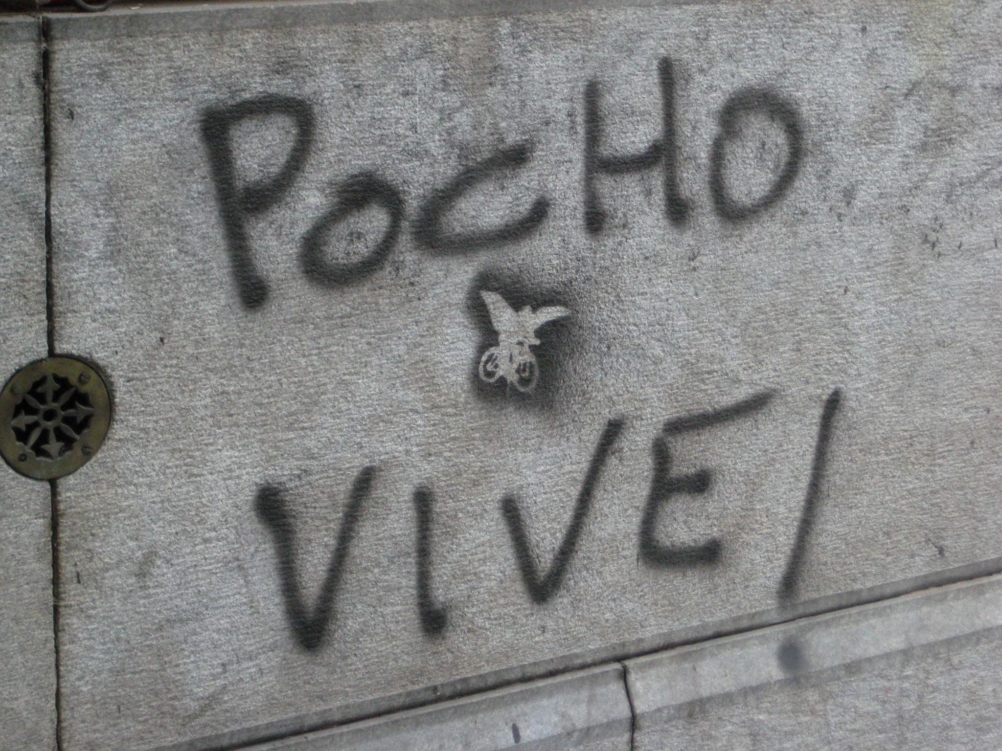 'Pocho' vive!