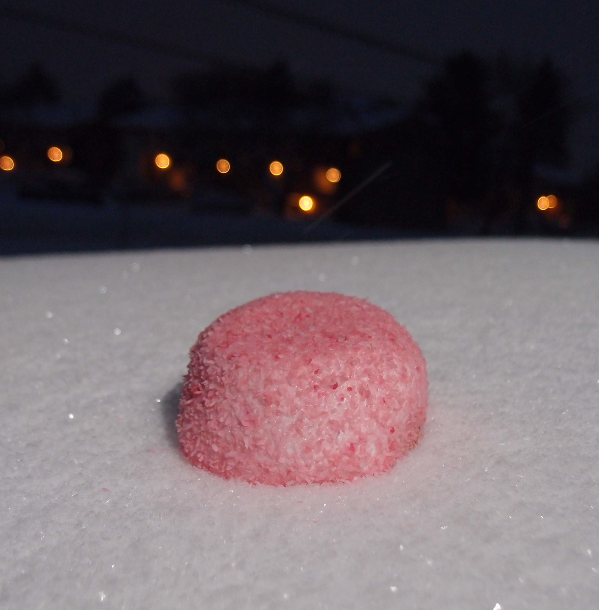 Snoball in Snow.JPG