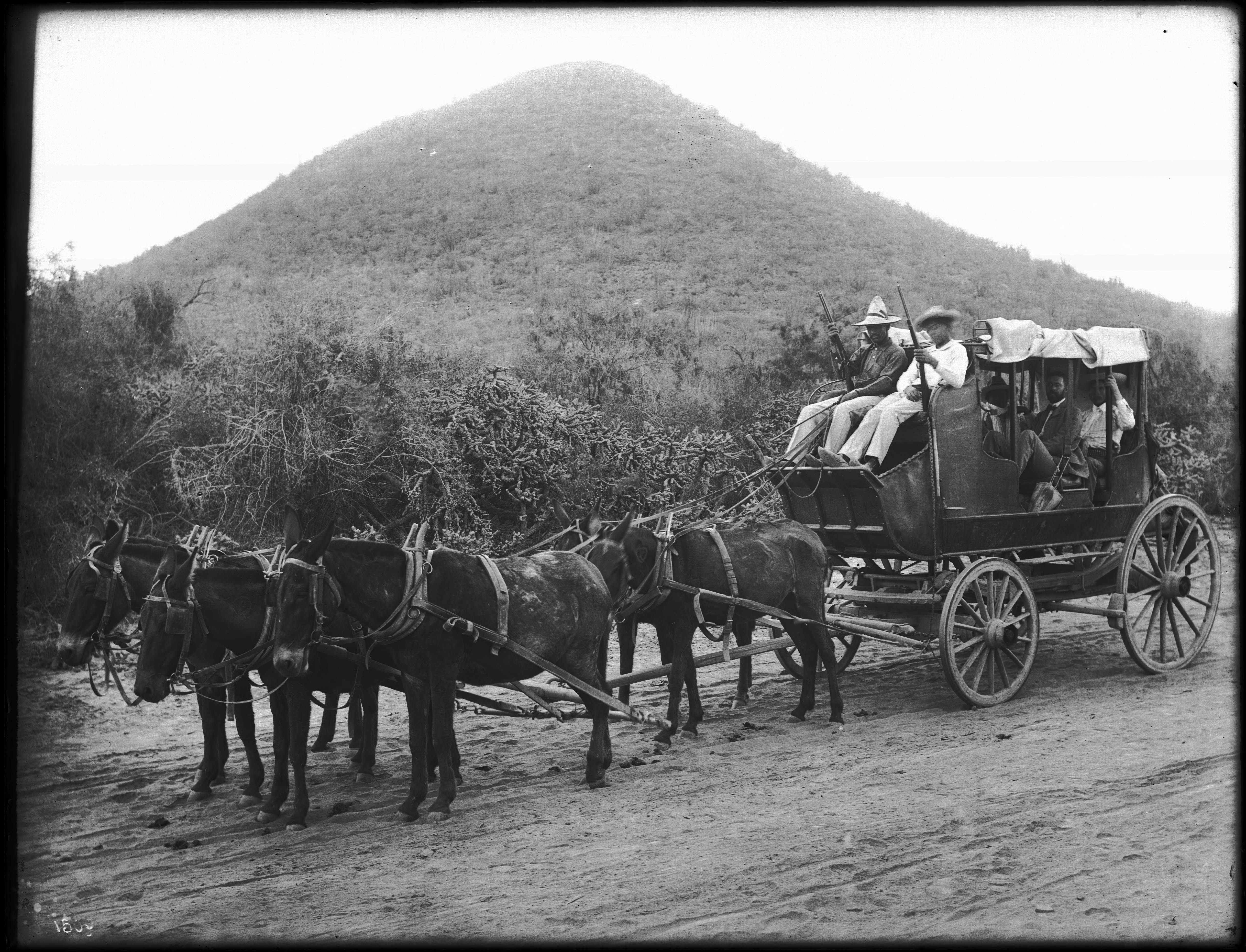 File:Stage coach drawn by five horses along the river route, Rio Yaqui (