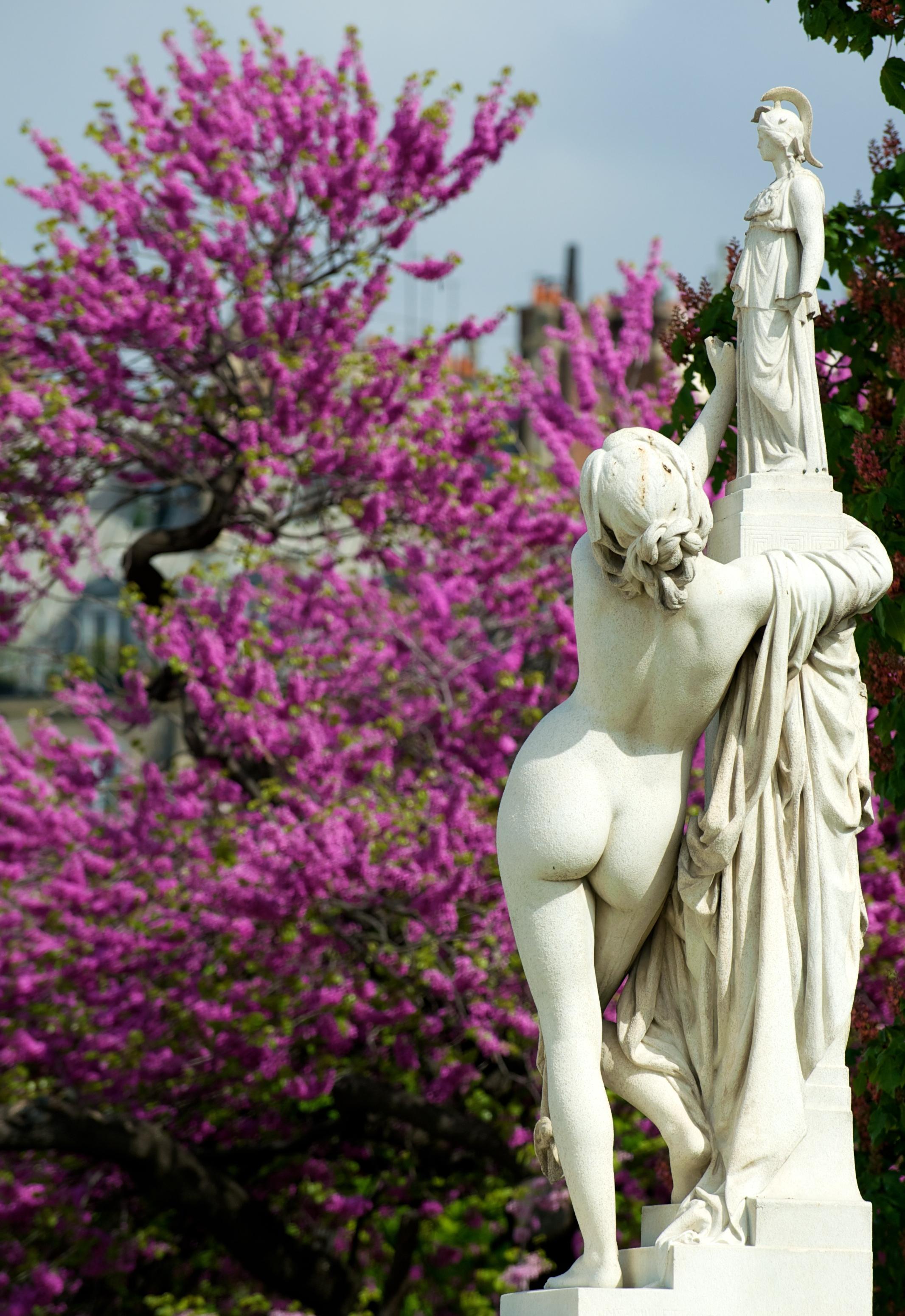 File statues 2 jardin des tuileries paris 2010 wikimedia commons - Statues jardin des tuileries ...