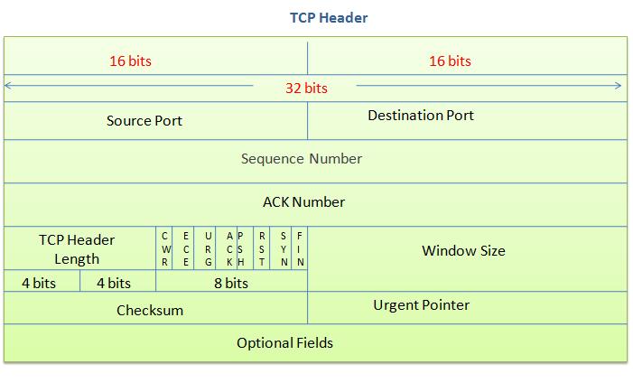 TCP Header.png
