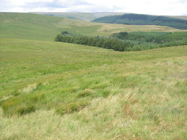 Taf Fechan Forest from Twyn Croes - geograph.org.uk - 890186