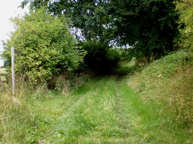 The Minster Way at Great Givendale - geograph.org.uk - 1420816
