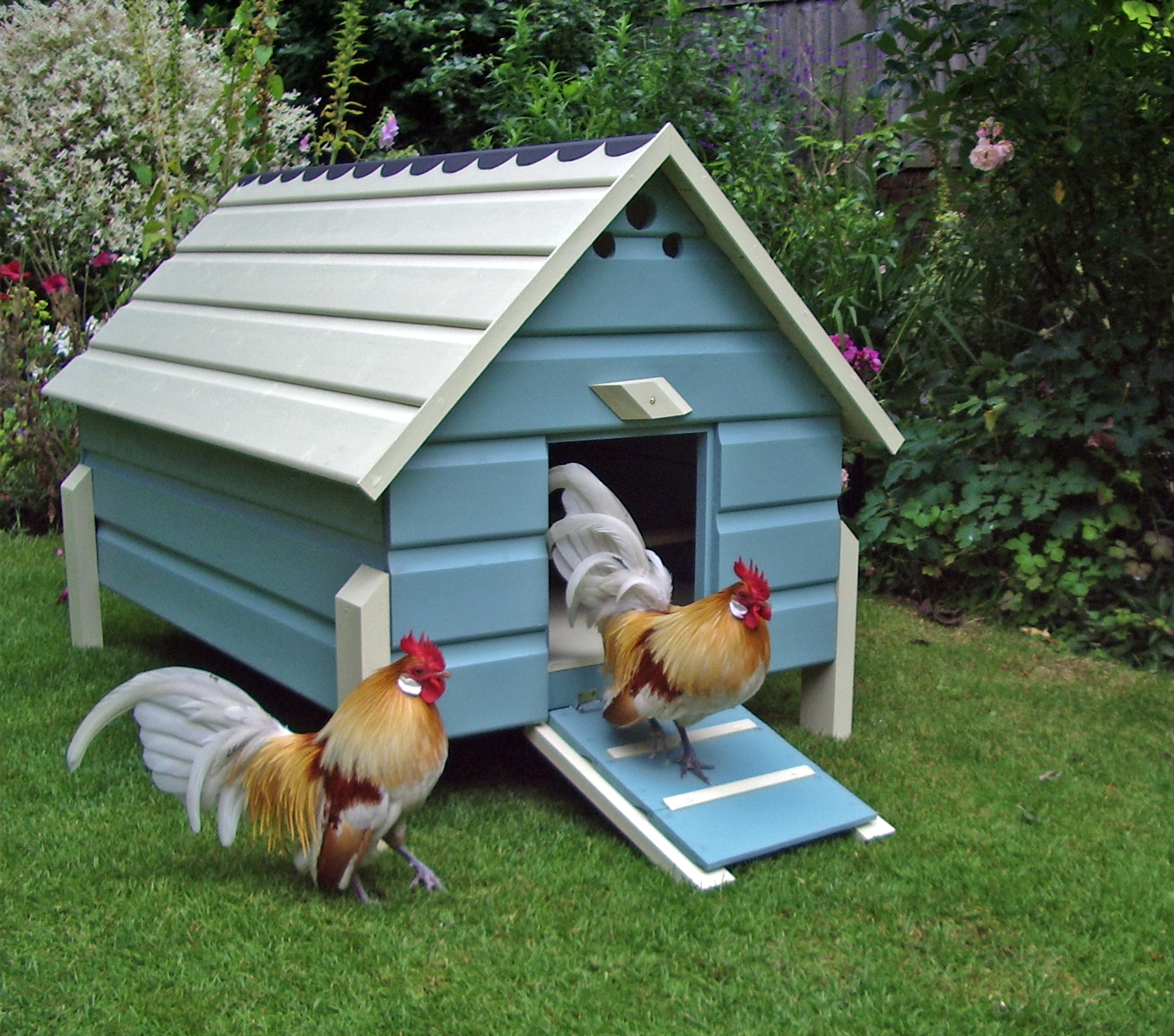 Creative Chicken Coop Designs to Envy For | Coops & Cages Coops And ...