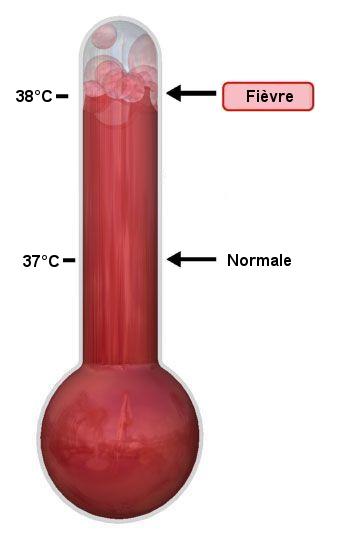 Fichier:Thermometre fievre.png — Wikipédia