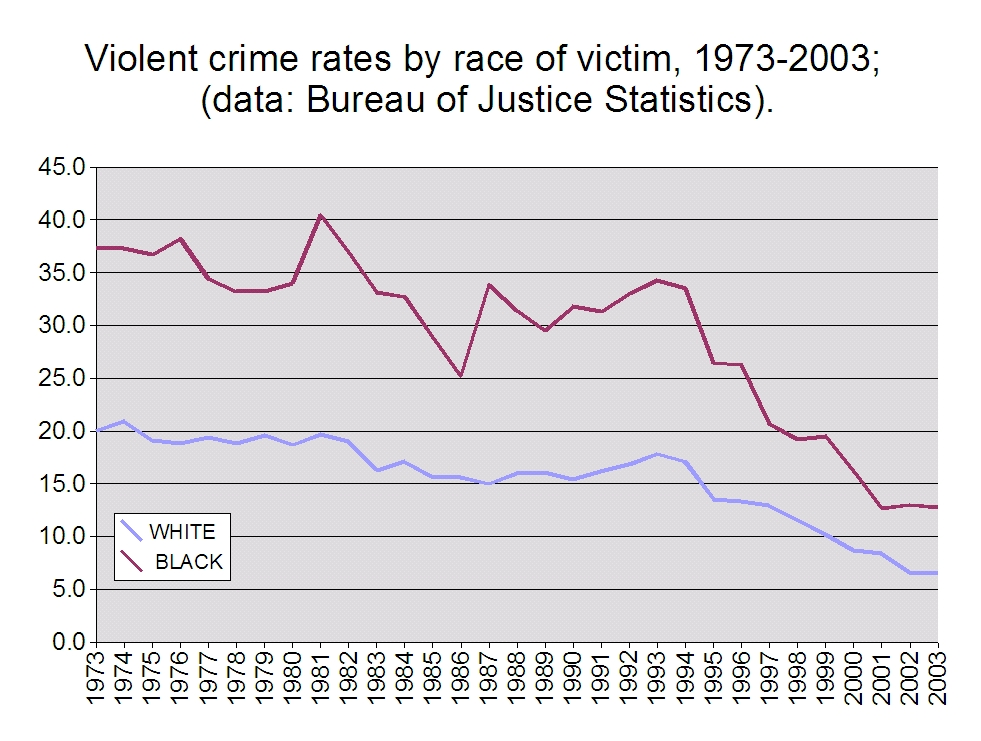 Fourteen Examples of Racism in Criminal Justice System