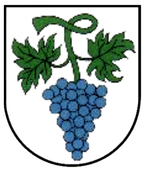 File:Wappen Bottenau.png