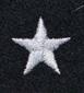 0009 aChorąży ZS.png