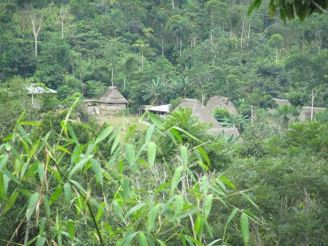 غابات الامازون Amazon_Villages.jpg