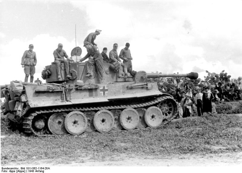 Tiger 132