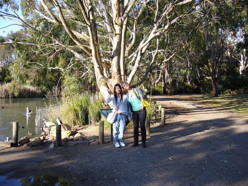 File Cleland Wildlife Park South Australia Panoramio Jpg