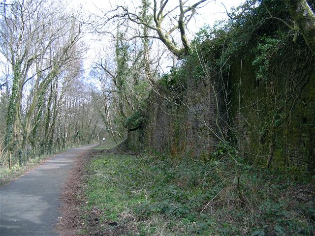 Dismantled railway in Dare Valley Country Park - geograph.org.uk - 794507