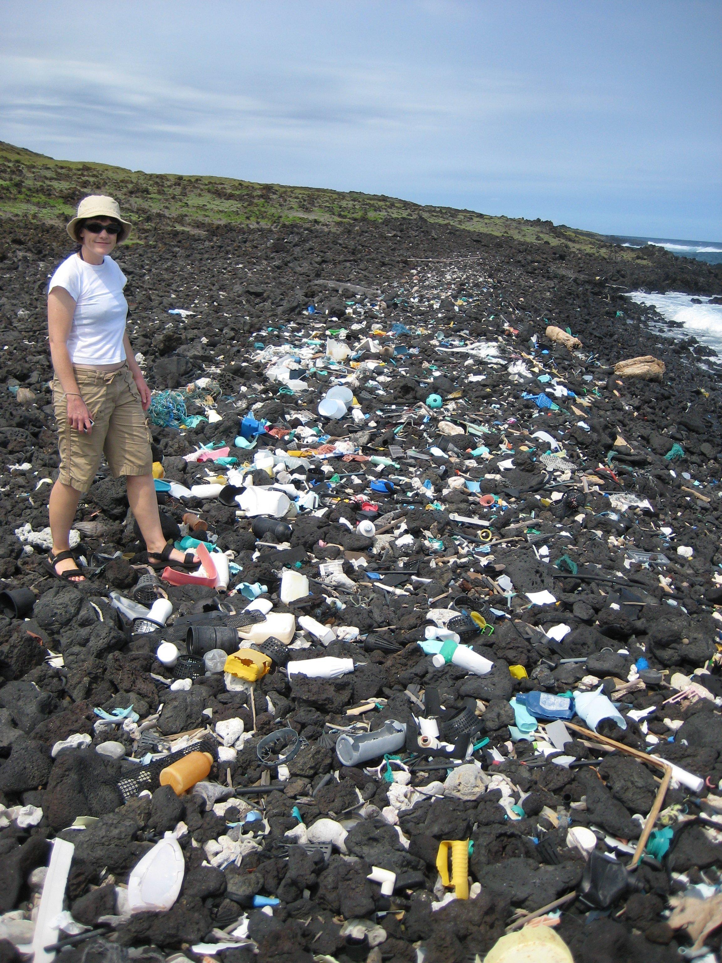 Trash on Shore