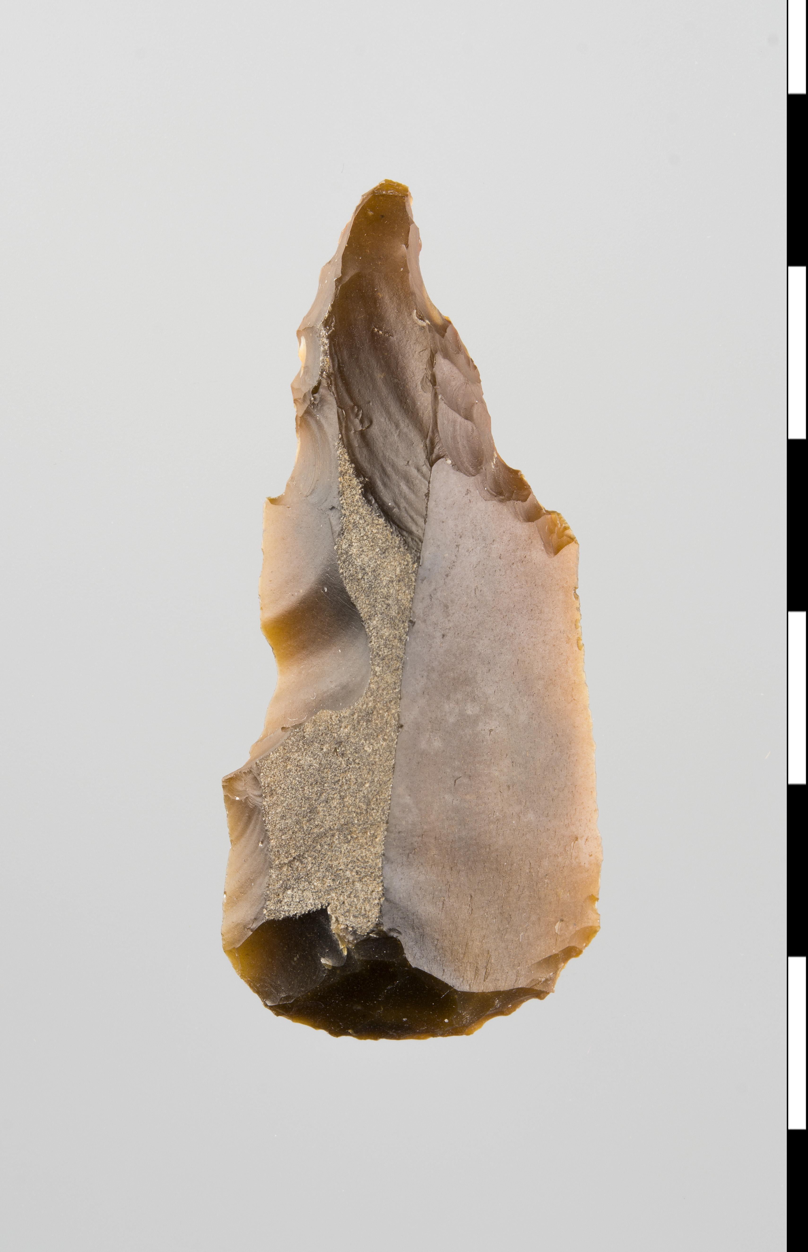 Link to Prehistorics Shop