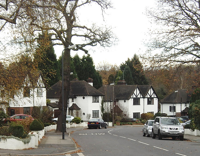 Great Thrift, Petts Wood - geograph.org.uk - 1053268