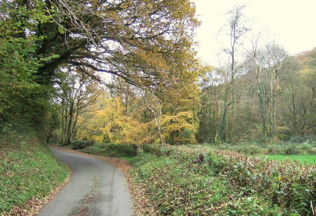 Gwaun valley lane - geograph.org.uk - 278486