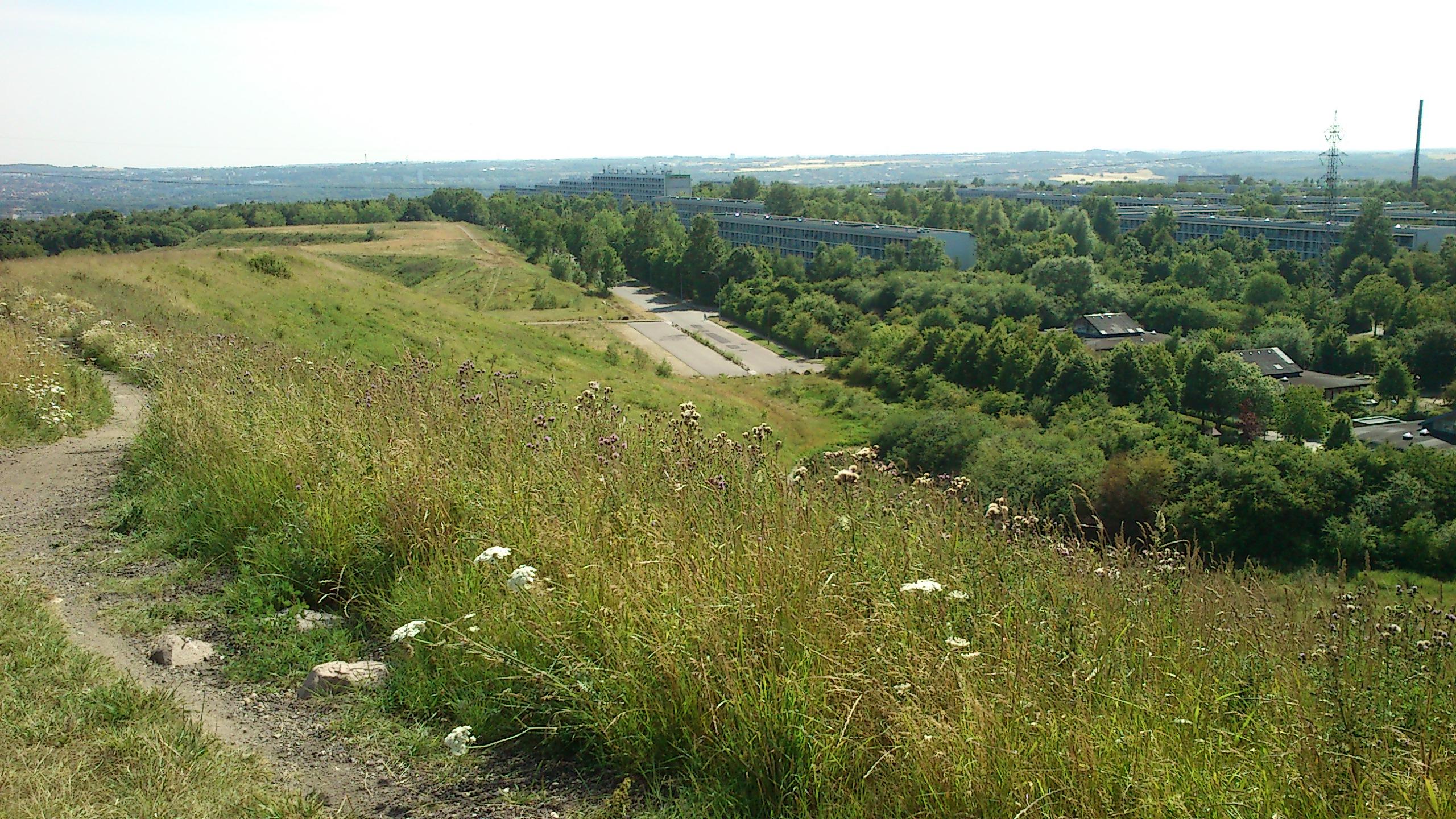 hasle hills in gellerup.jpg
