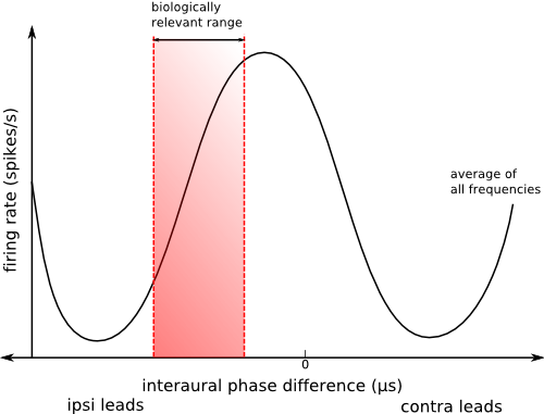 Description IPD vs firing rate-2.png