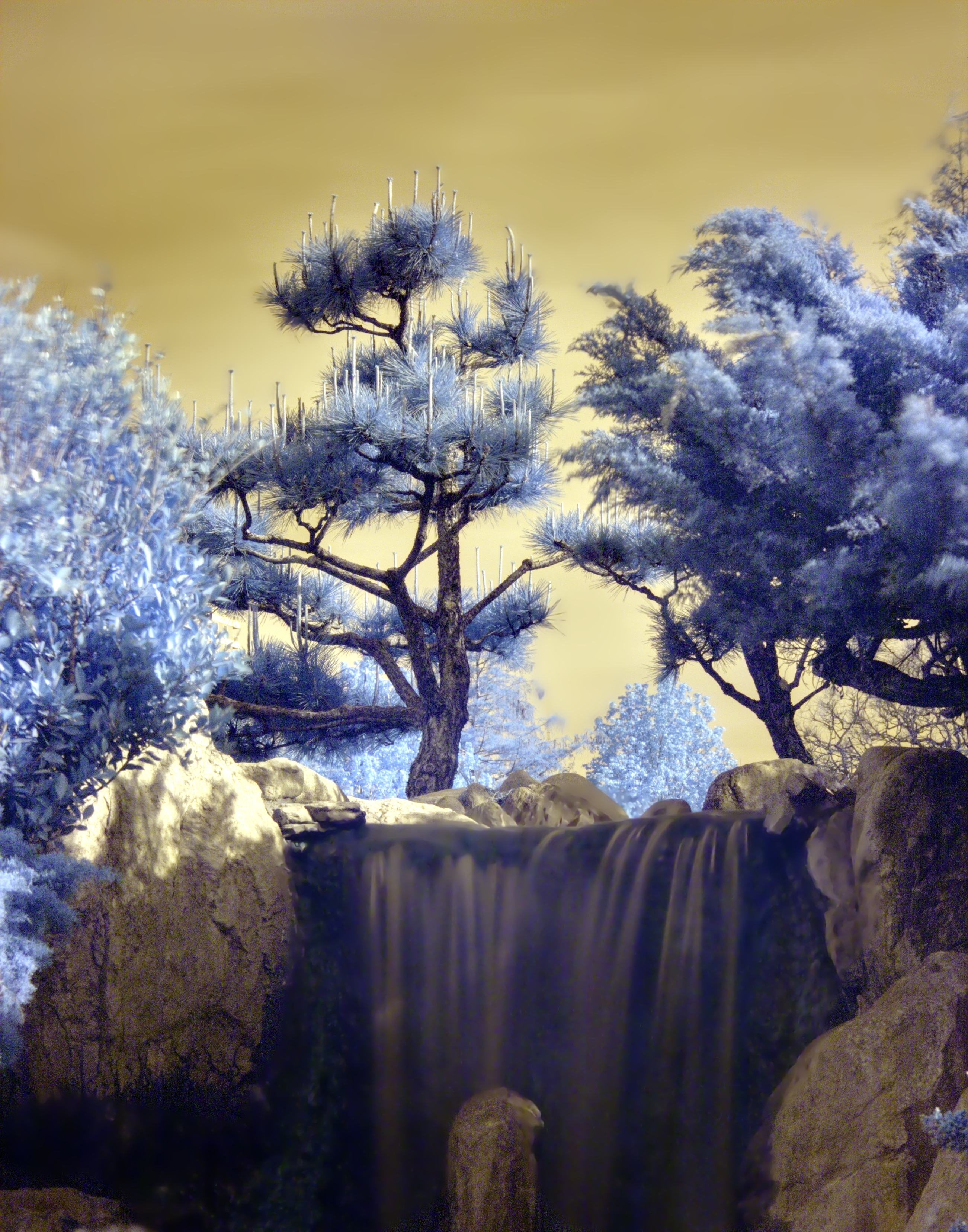 File:Japanese trees and waterfall - Infrared.jpg