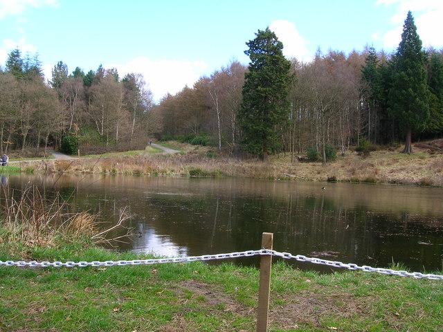 Lake near Gibside Hall - geograph.org.uk - 1083547