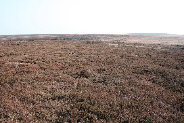 Moorland, Margery Hill - geograph.org.uk - 385128