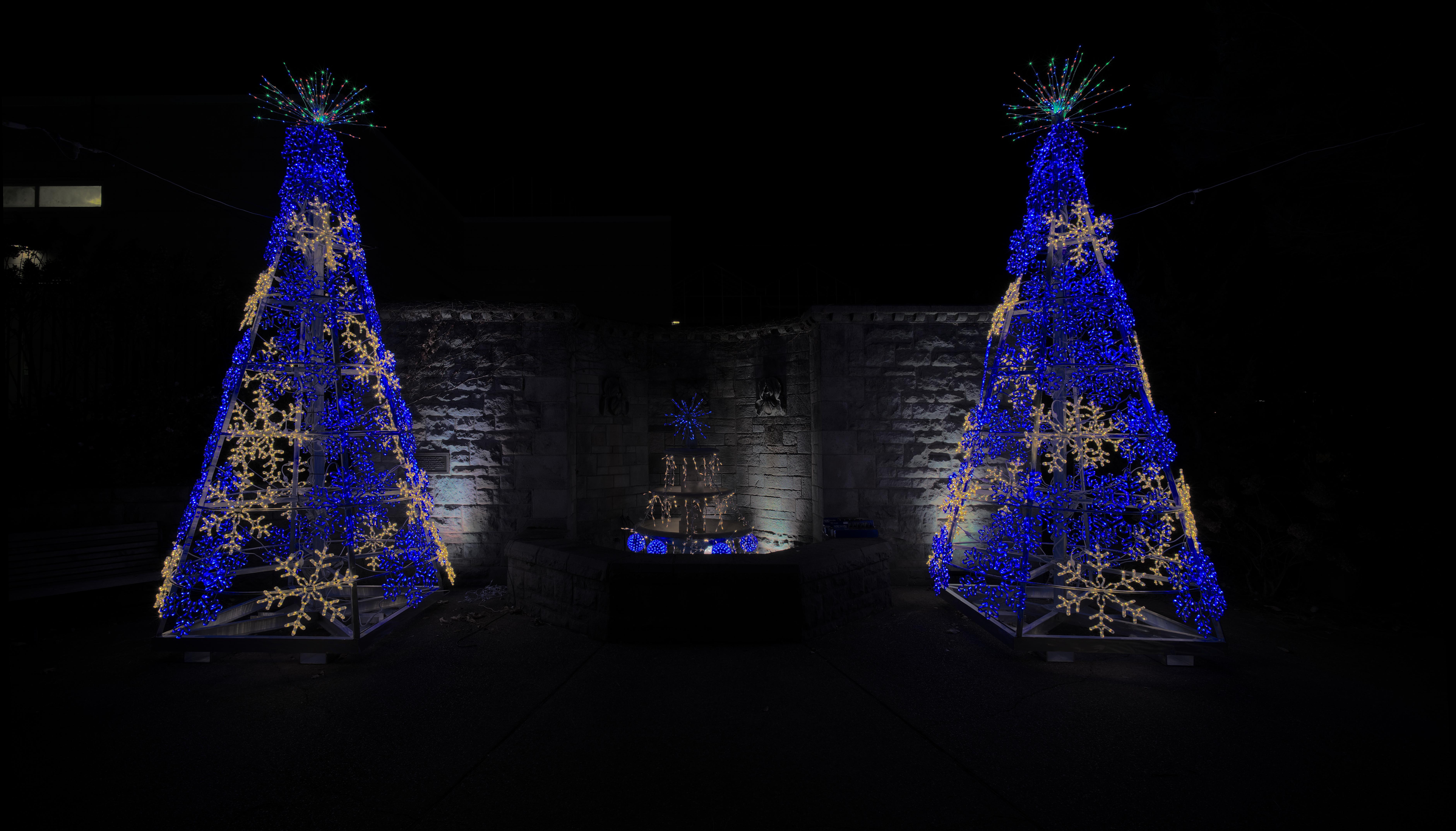 filephipps conservatory winter 2015 christmas treesjpg