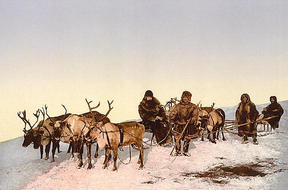 Datei:Rentierschlitten in Russland um 1900.jpg