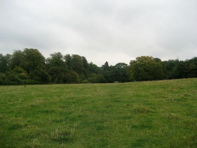 Ridgeway below Pulpit Hill - geograph.org.uk - 580790