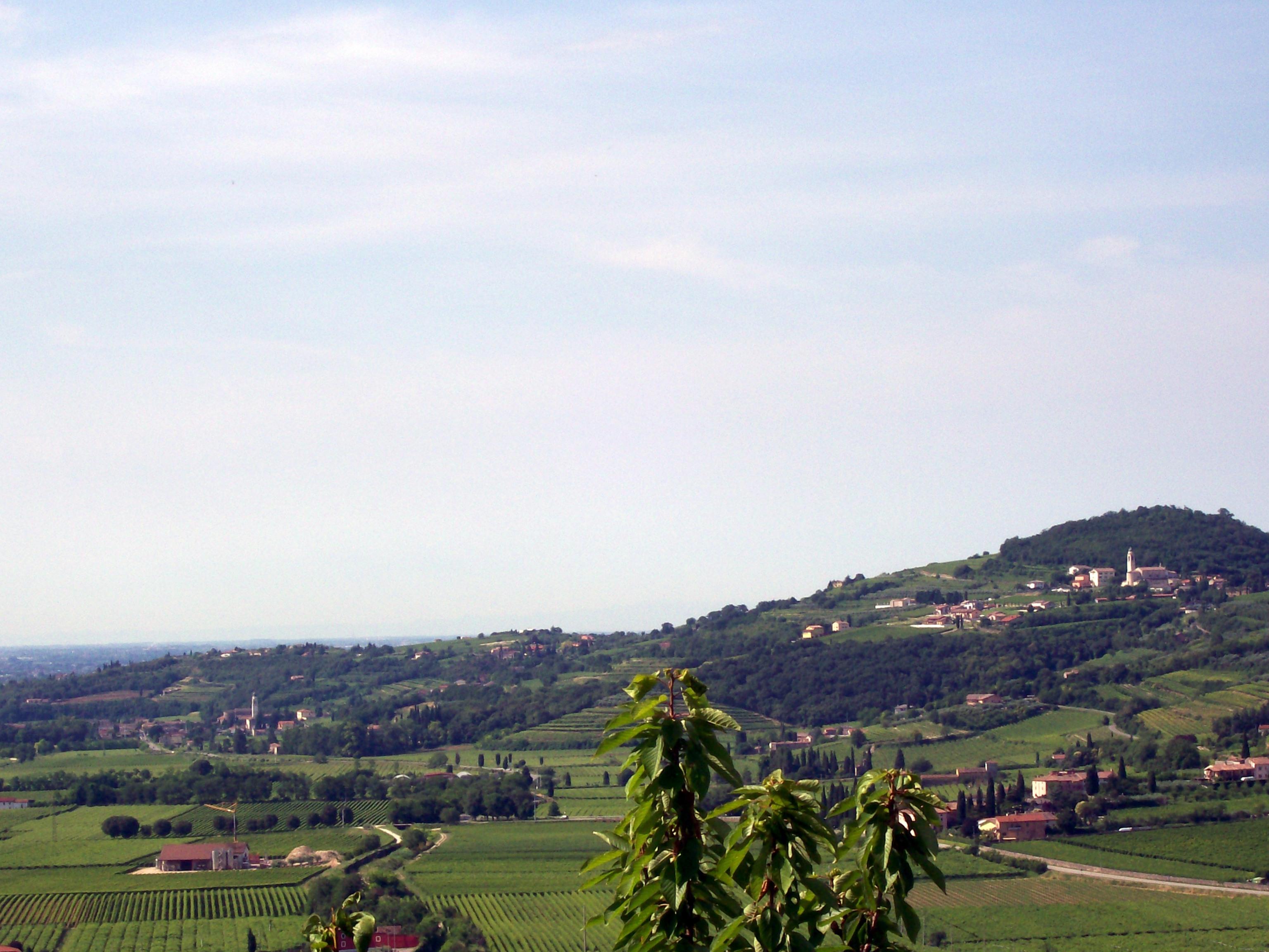 San Pietro Di Legnago Verona lavagno - wikipedia
