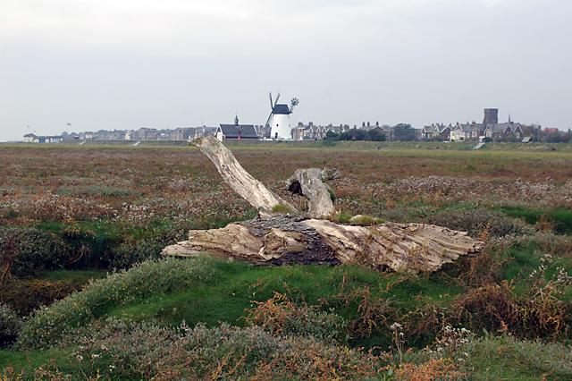 Salt marsh on the Ribble estuary - geograph.org.uk - 611881