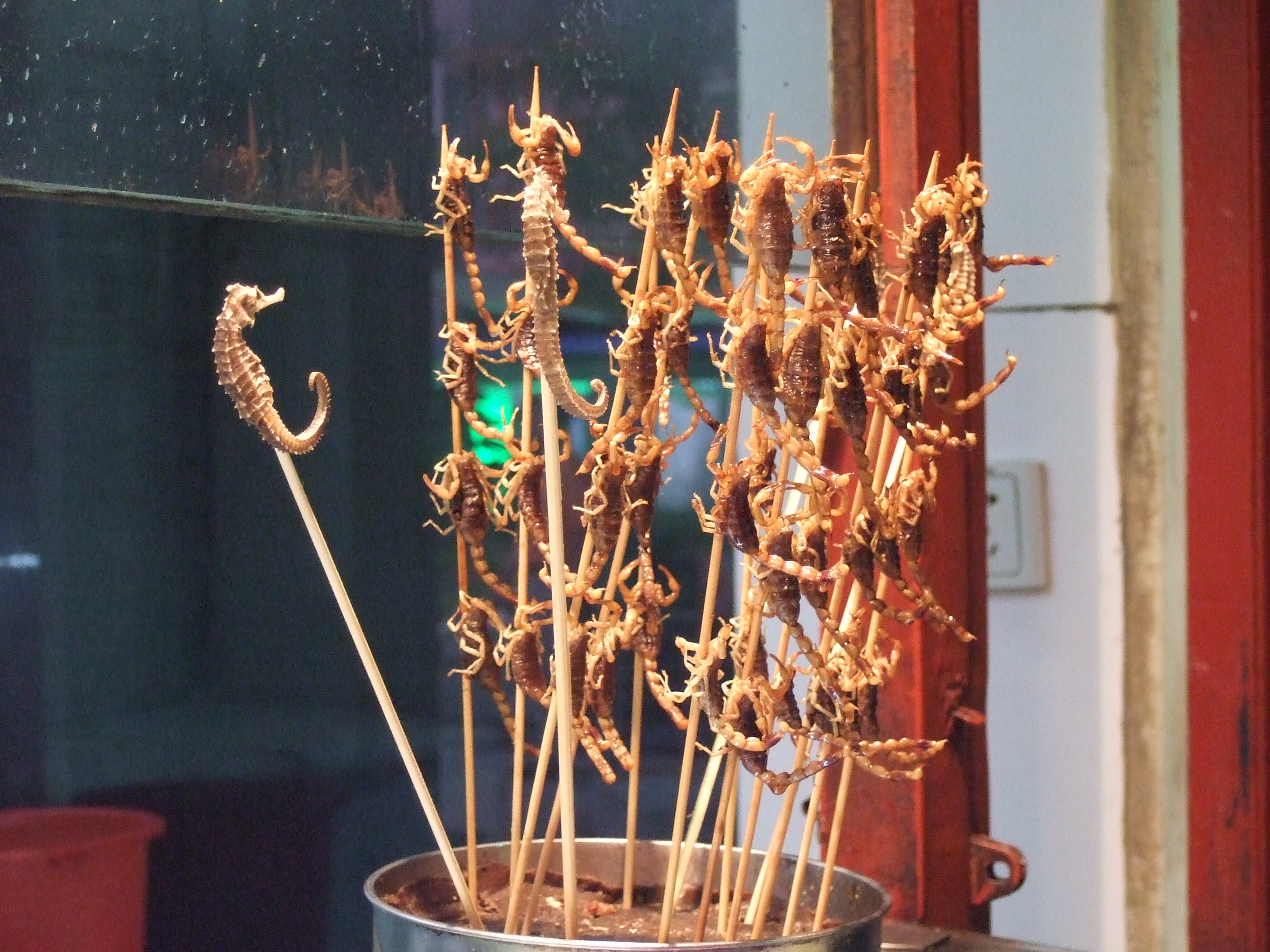 The Seahorses Do It Yourself