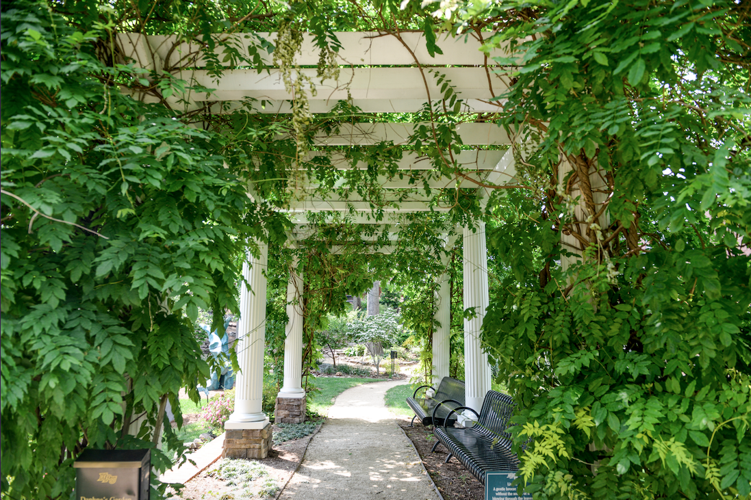 File The Wisteria Arbor Png Wikimedia Commons
