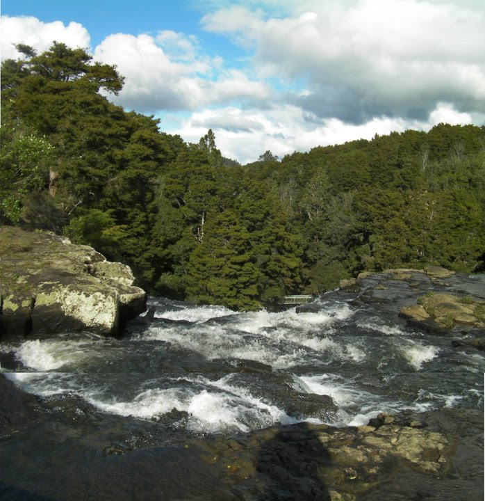 Whangarei New Zealand  City new picture : Whangarei Falls New Zealand 2 Wikipedia, the free ...
