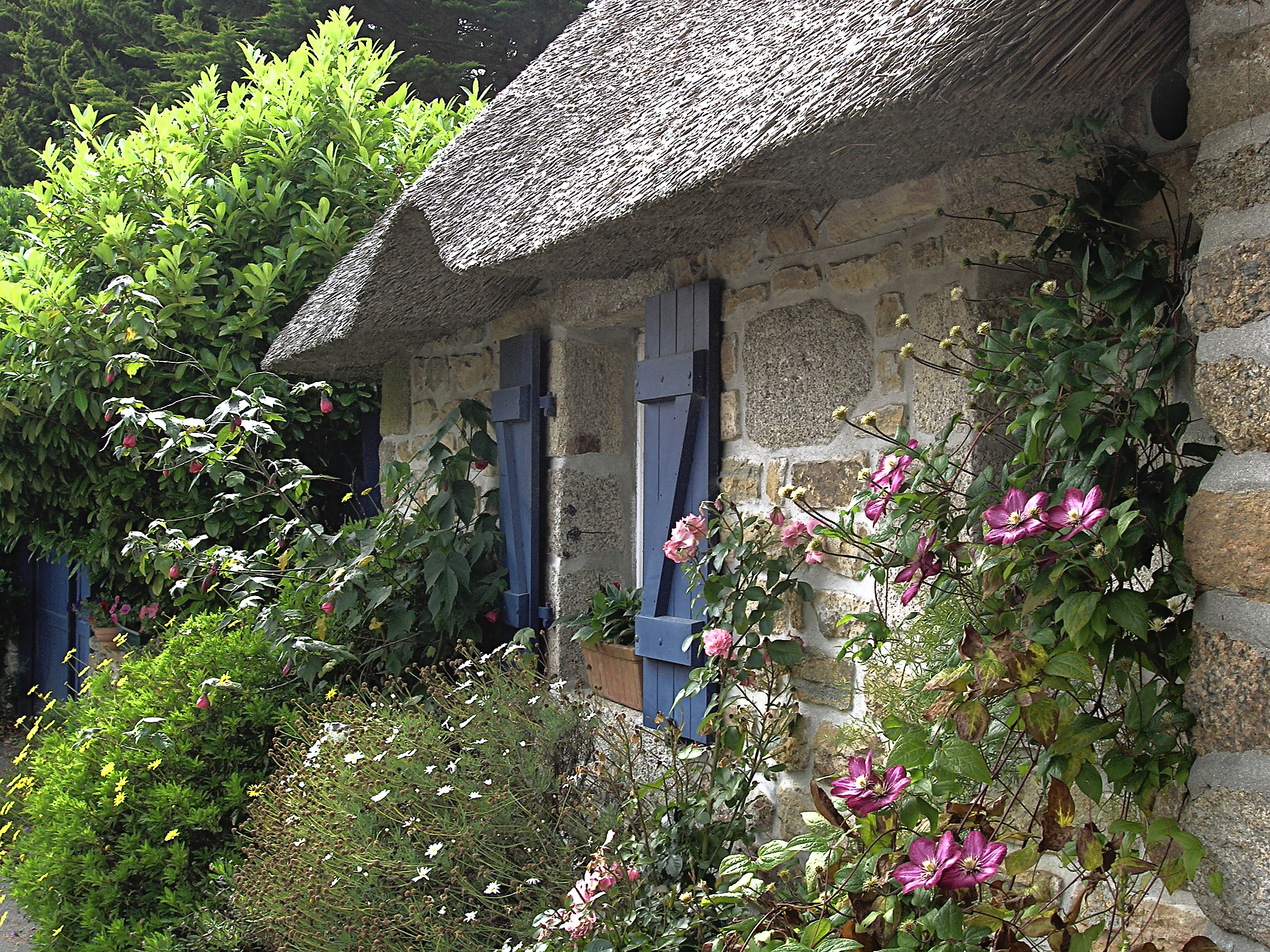Cottage garden wikiwand for Garden design galway