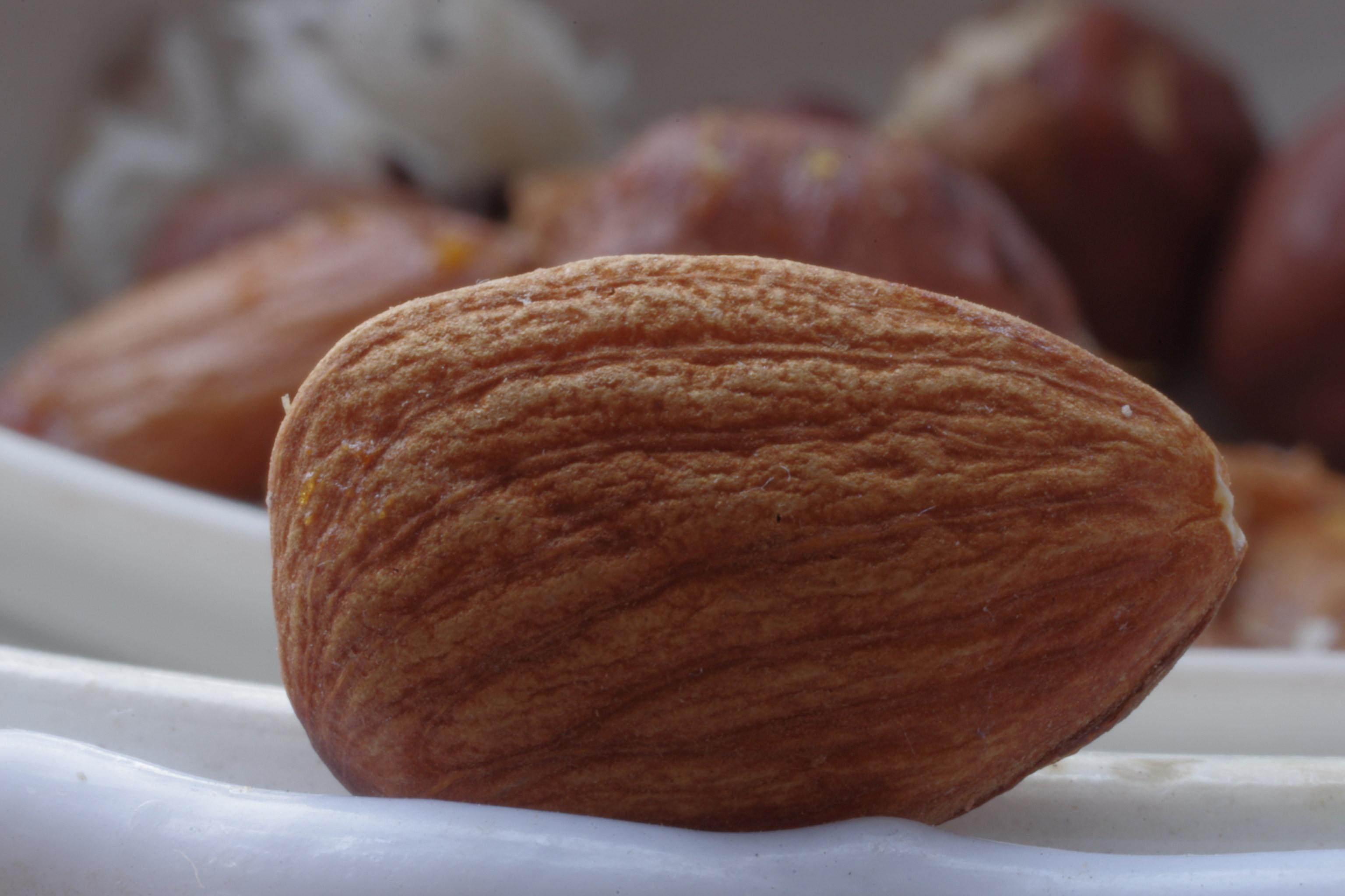 File almonds macro g wikimedia commons