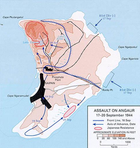 Battle of Anguar map.jpg