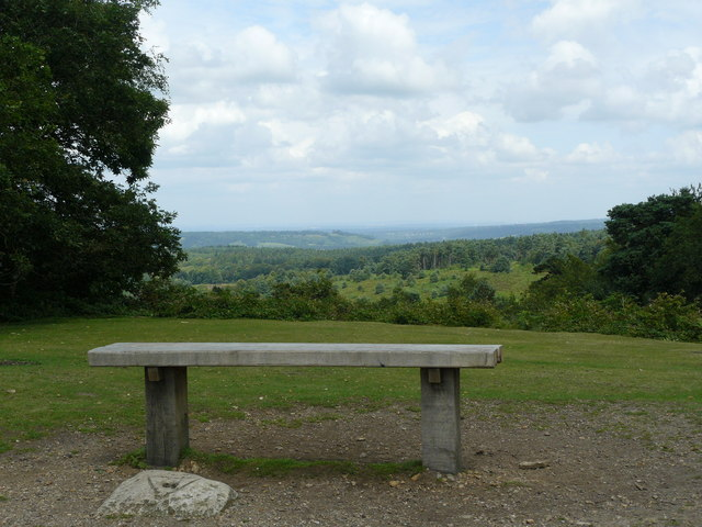 Bench View, Leith Hill, Surrey - geograph.org.uk - 1403821