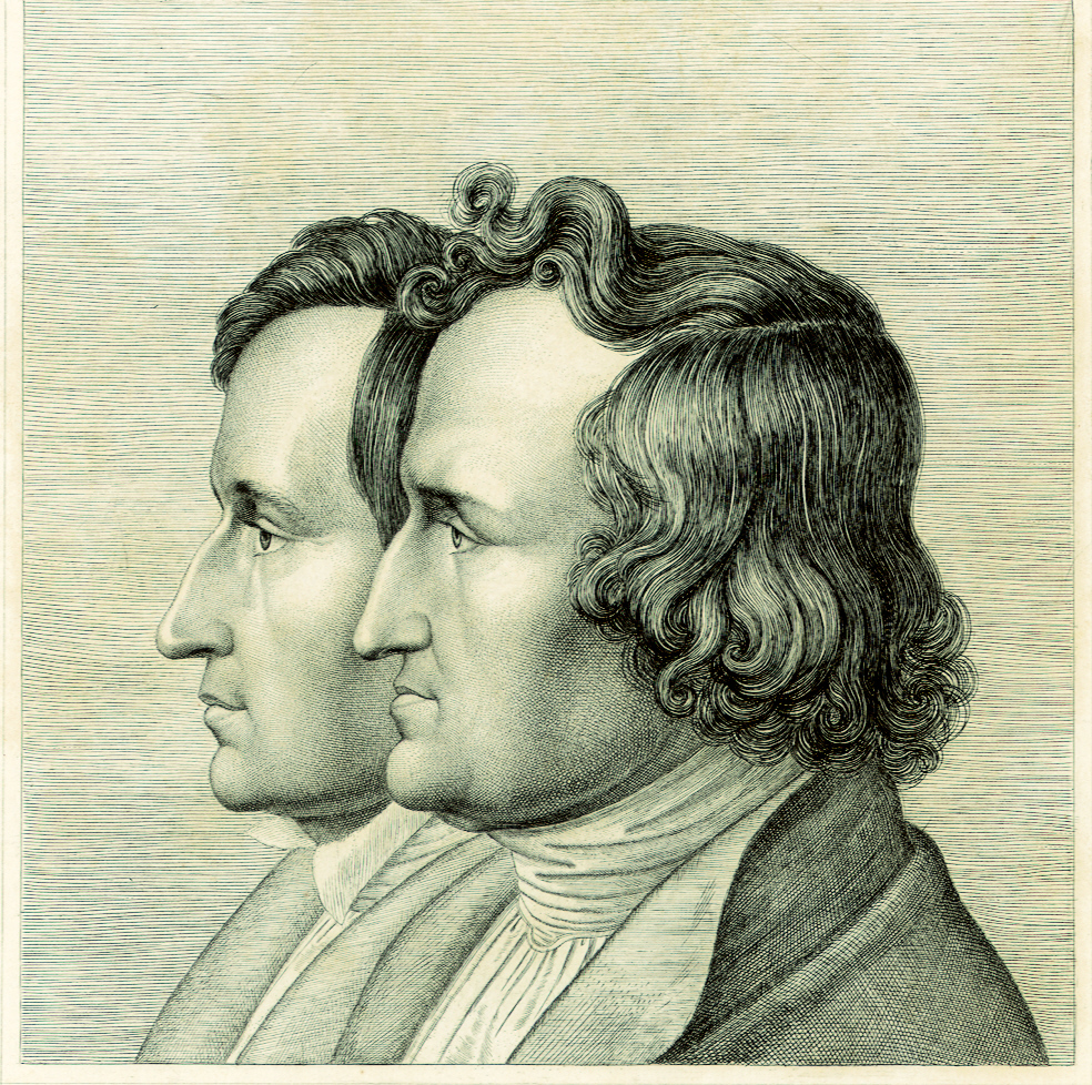 doppelportrt brder grimm 1843 - Gebruder Grimm Lebenslauf