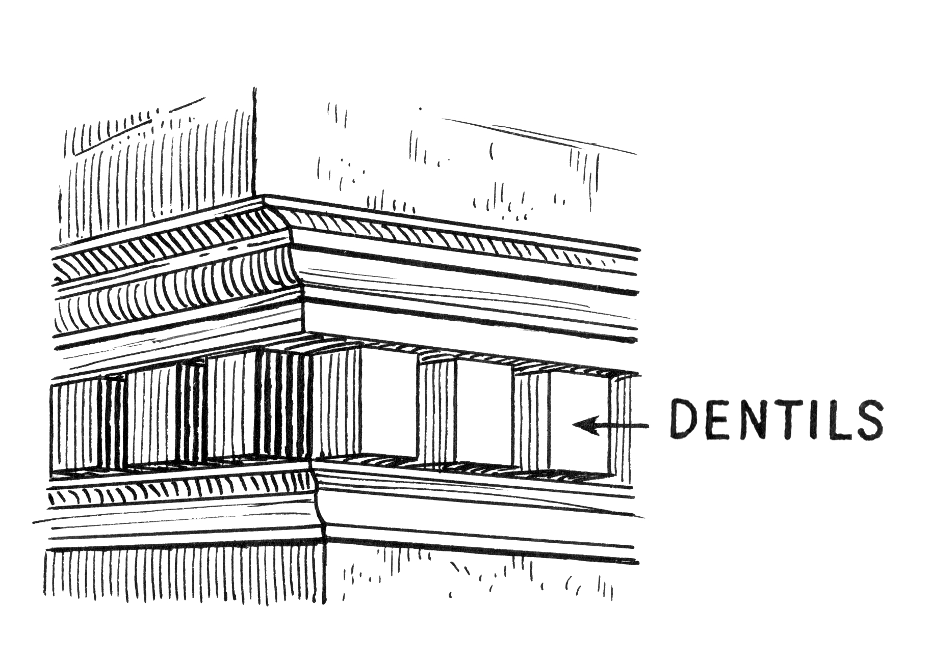 ionic columns and dentil - photo #28