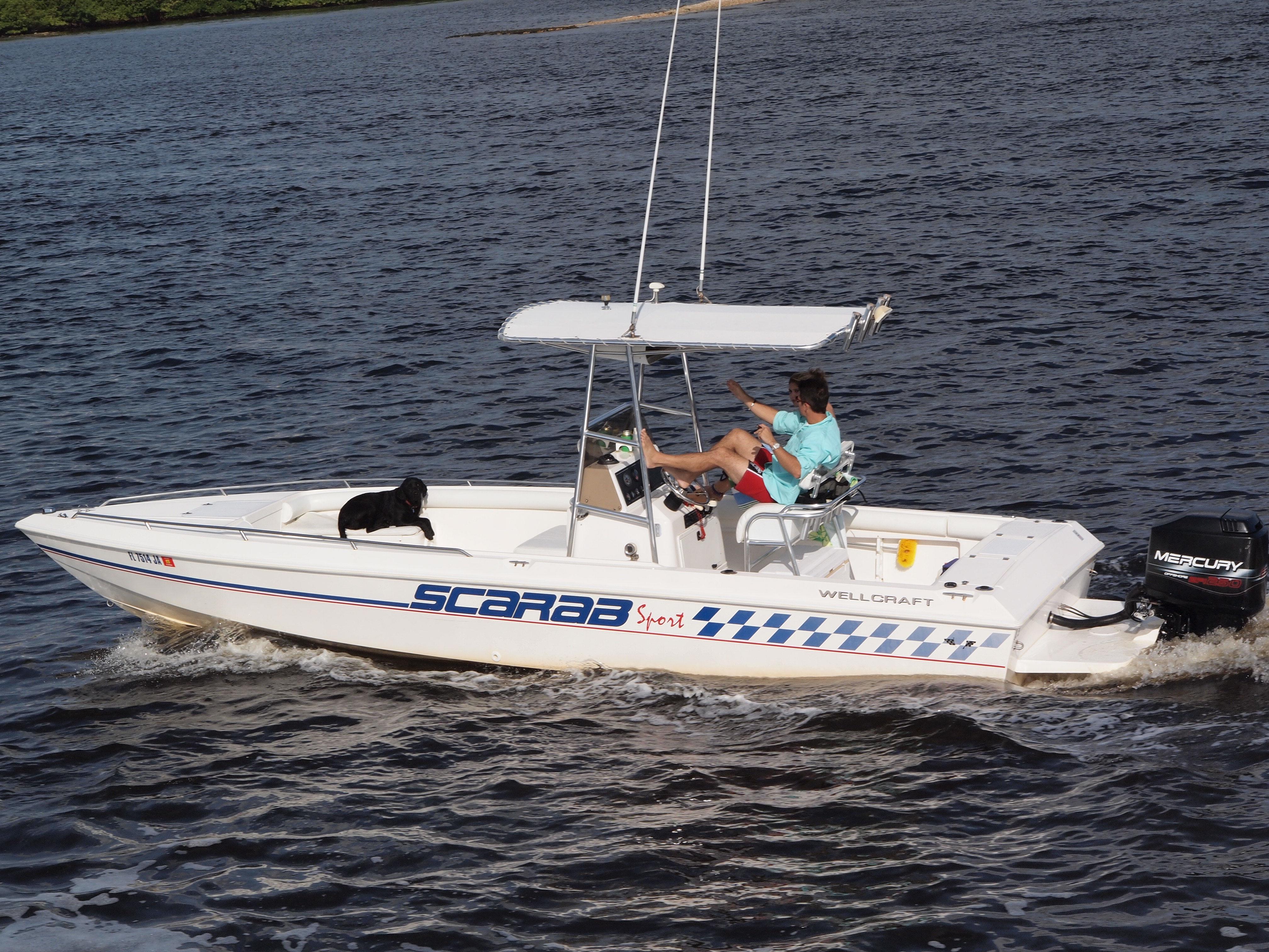 Scarab Boat Wikipedia
