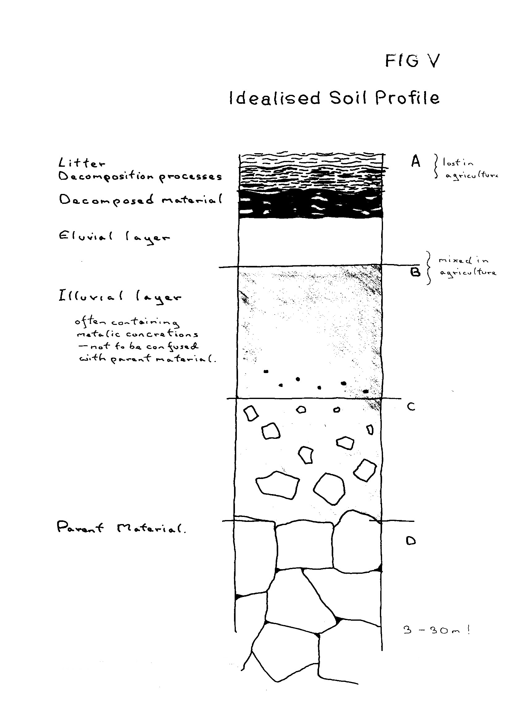 File fig v idealised soil wikimedia commons for Soil meaning in english