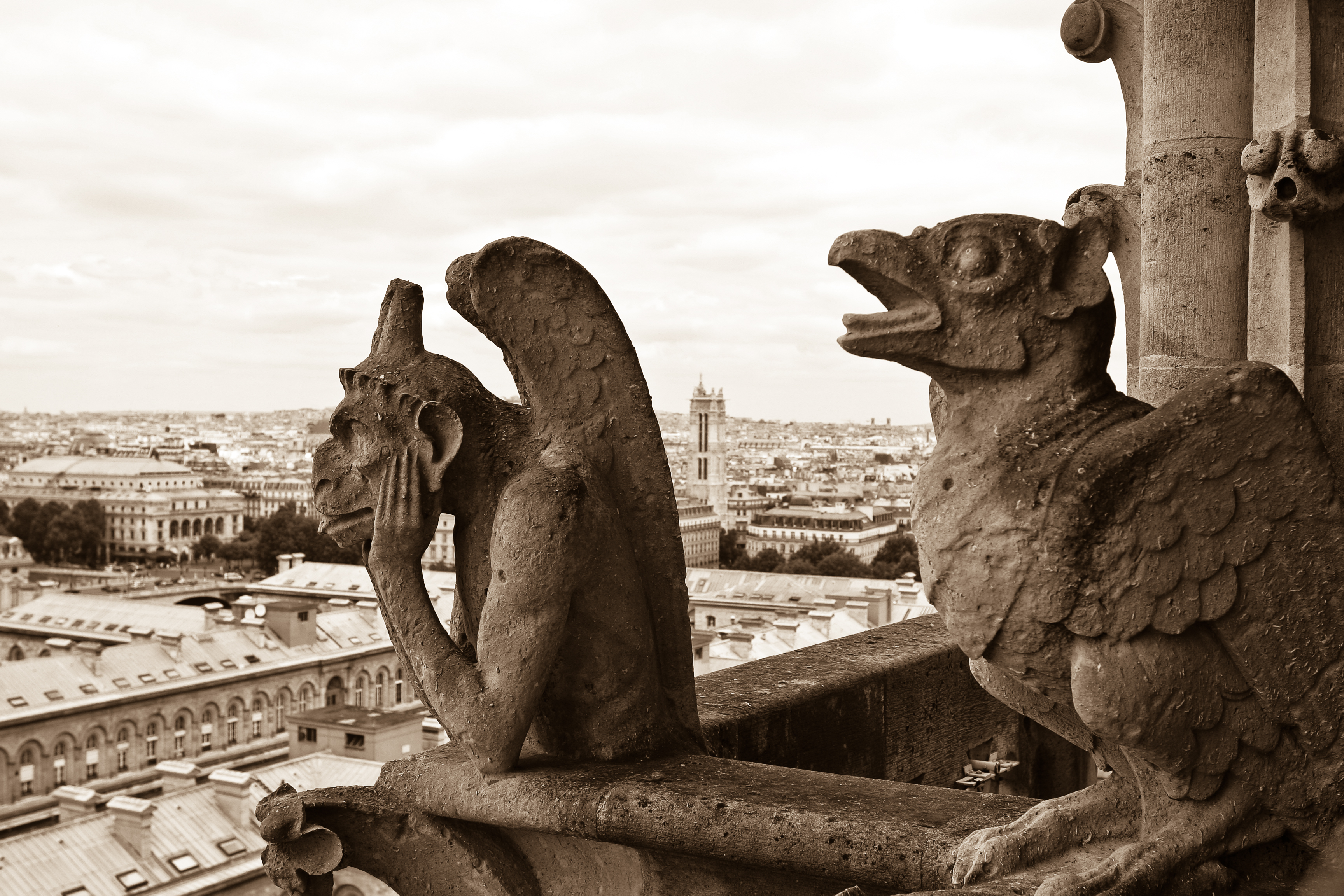 File:Gargoyles, Notre-Dame, Paris (3584514985).jpg - Wikimedia Commons