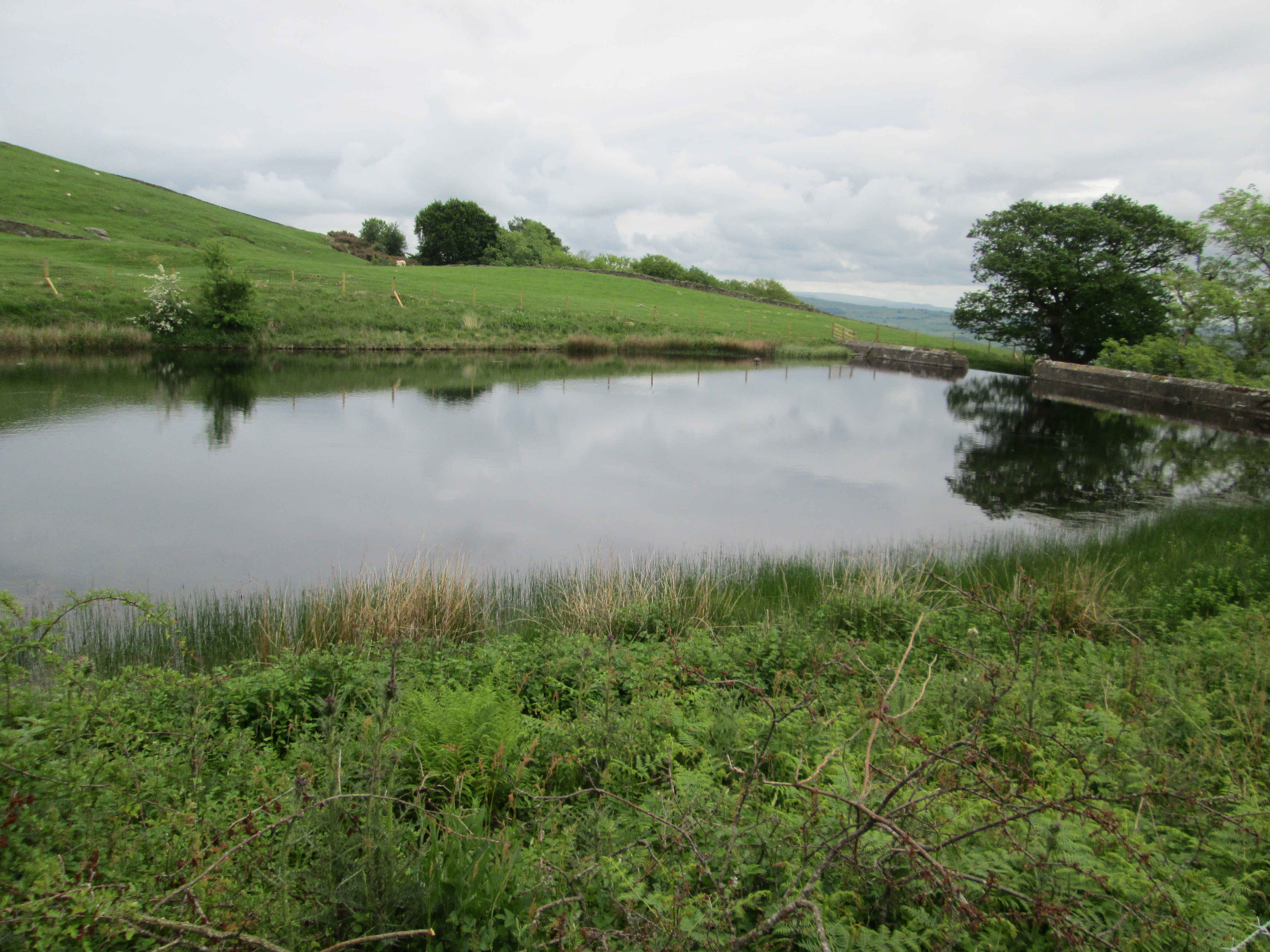 Ghyll Pool Reservoir.jpg