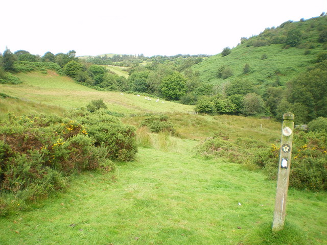 Glyndŵr's Way marker and footpath - geograph.org.uk - 1425033