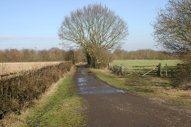 Horton Country Park, Chessington - geograph.org.uk - 1176498