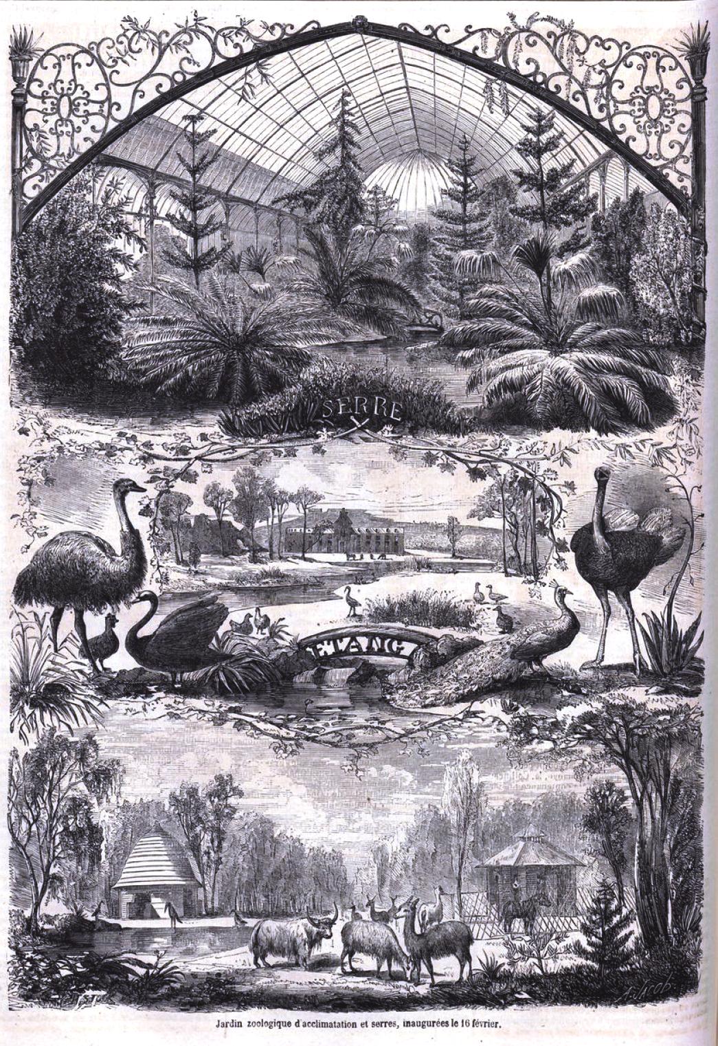 Parco del monviso sito ufficiale for Jardin zoologique d acclimatation