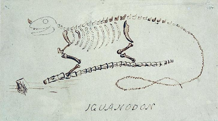 Mantell's Iguanodon restoration.jpg